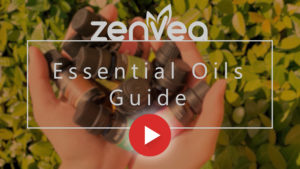 Essential Oils Guide